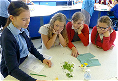 Gopher Science Lab at Cwmcarn High School